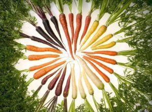 wortels-oranje-300x221